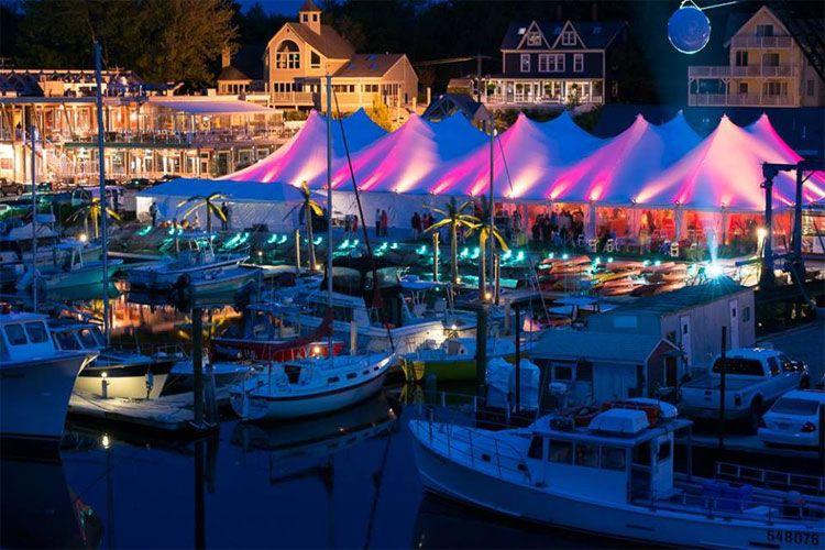 Newsletter Elmwood Resort